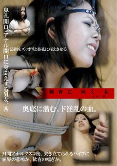 飼育に向く女 被虐を求めるド淫乱な血。 山科茜