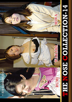 THE NOSE COLLECTION-14 ~美少女鼻盛り耽美会~