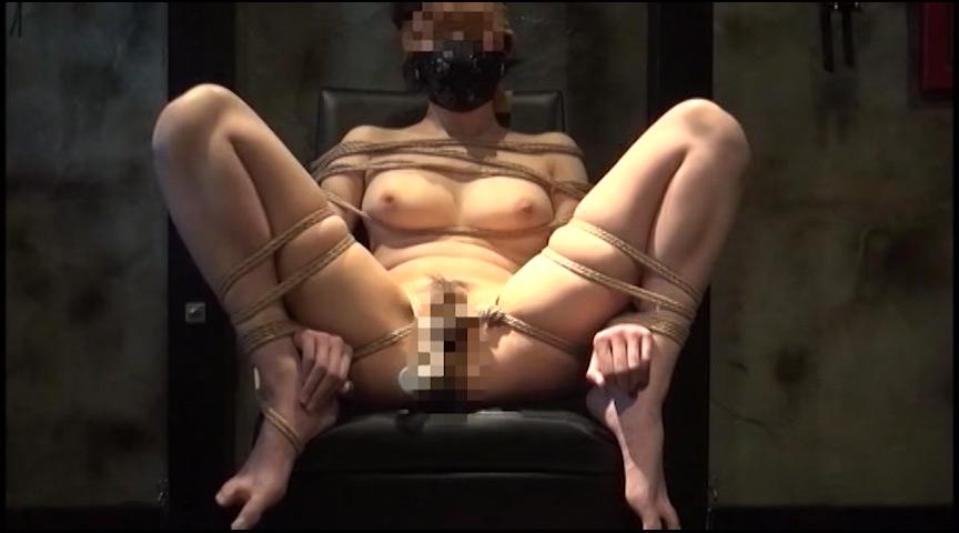 家畜コレクターDX 素人マゾ奴隷秘匿映像 画像 4
