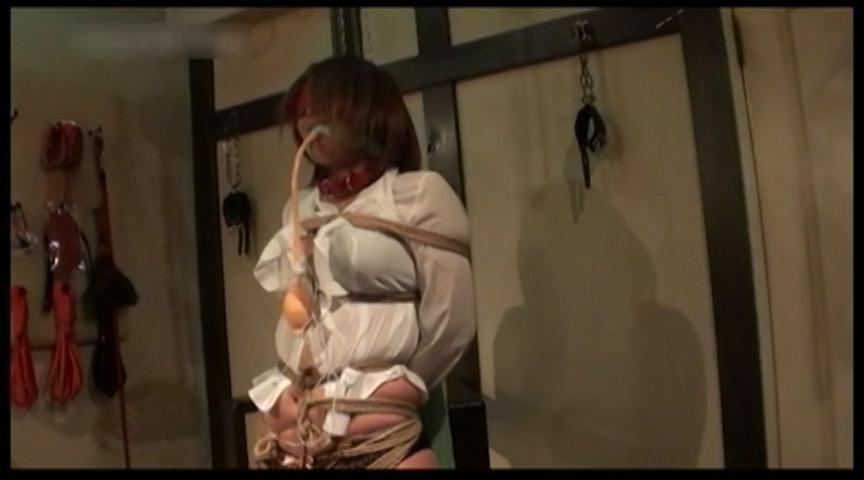 家畜コレクターDX 素人マゾ奴隷秘匿映像 画像 7