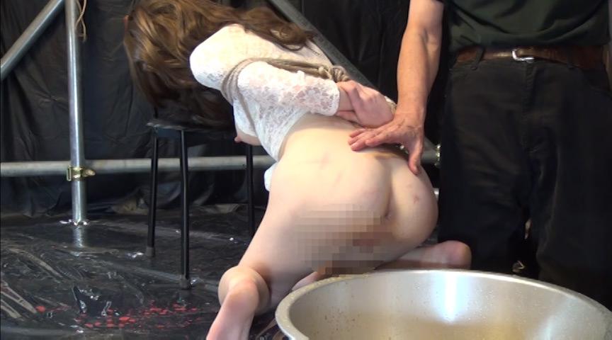 穴哭 凌辱膣肛拡張 ~嬲られるパイパン人形 19枚目