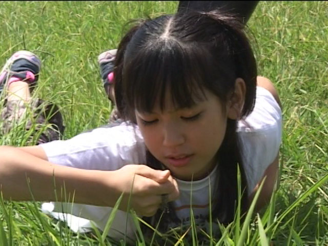 ‐夢幻美少女戦士‐ ドリームナイツ Vol.02